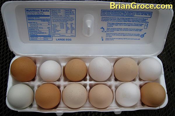 2014-08-02-Free-Range-Eggs