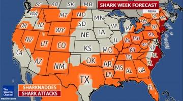 Shark Week Forecast Includes Sharknadoes